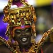Carnevale Rio de Janeiro: virus Zika non ferma la festa15