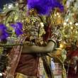Carnevale Rio de Janeiro: virus Zika non ferma la festa23
