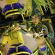 Carnevale Rio de Janeiro: virus Zika non ferma la festa3
