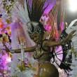 Carnevale Rio de Janeiro: virus Zika non ferma la festa24