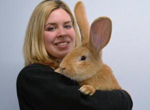 YOUTUBE Coniglio gigante cerca casa e...crescerà ancora