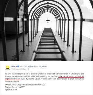 Vince concorso Nikon Captures, ma la foto...era un falso