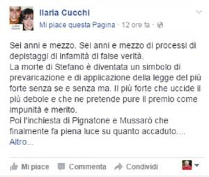 """Ilaria Cucchi: """"Perito massone giudica mio fratello Stefano"""""""