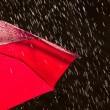 Meteo, maltempo in arrivo: week end di pioggia e vento