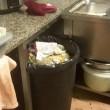 Roma, ristorante cinese chiuso: feci di ratto e sporcizia 4