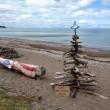 """Nuova Zelanda, 40mila cittadini comprano spiaggia: """"Ora è di tutti""""05"""