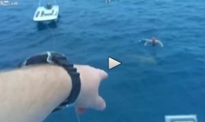 Russo ubriaco nuota accanto a squalo