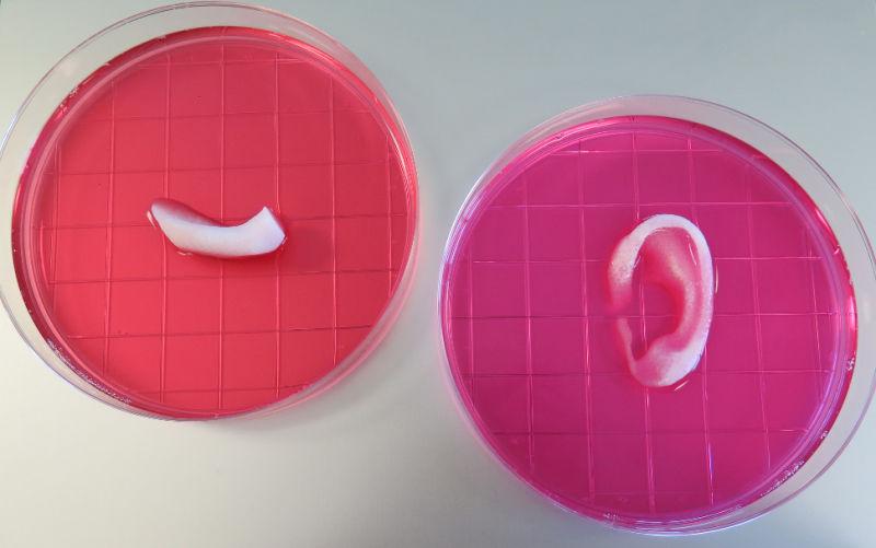 YOUTUBE Stampante 3D crea pezzi di ricambio corpo umano