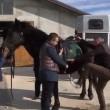 YouTube: Vasco Pirri Ardizzone cade da cavallo imbizzarrito5