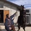 YouTube: Vasco Pirri Ardizzone cade da cavallo imbizzarrito7