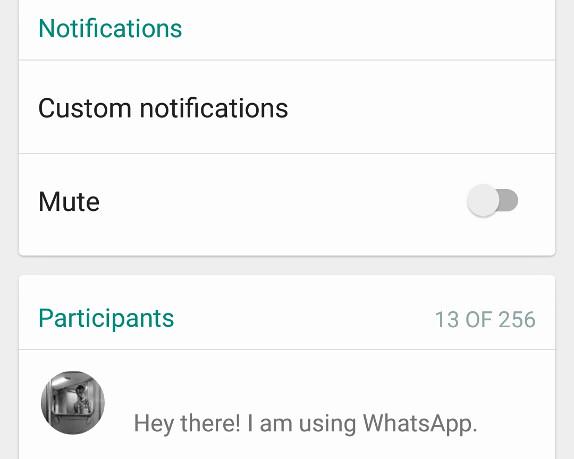 WhatsApp, aggiornamento aumenta partecipanti in chat 02