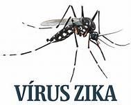 La zanzara di zika