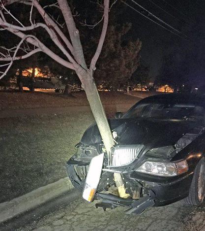 Viaggia in auto con albero da 5 metri nel cofano2
