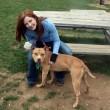 Cane depresso fissa il muro: stava per essere adottato 3
