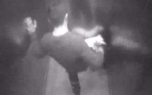 Cane picchiato in ascensore da fidanzato padrona 2