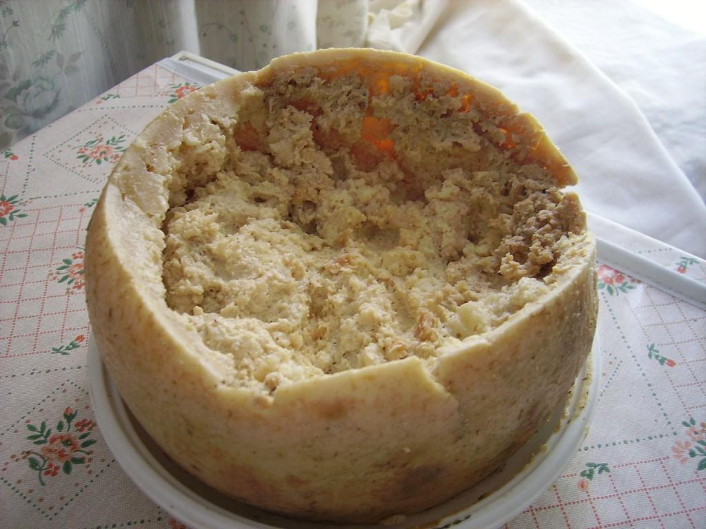 Casu marzu, il formaggio coi vermi, più pericoloso del mondo