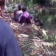 Coccodrillo morde gamba uomo: panico, tutti fuggono4