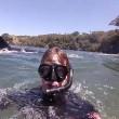 Fanno snorking, 2 orche nuotano con loro4