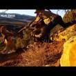 Puma soffia al guardiacaccia che lo libera 3