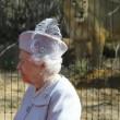 Regina Elisabetta allo zoo, leonessa si lecca i baffi3