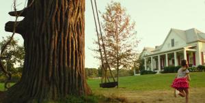 Guarda la versione ingrandita di Miracolo e film: bambina cadde da un albero ma Gesù la salvò