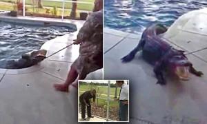 YOUTUBE Tornano dalle vacanze trovano coccodrillo in piscina