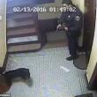 Poliziotto spara cane che scodinzola a New York