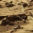 """YOUTUBE """"Corpo alieno su Marte"""": misteriosa roccia..."""