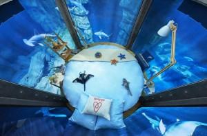 """Dormire tra gli squali: c'è una """"stanza"""" nell'acquario FOTO"""