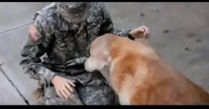 Soldatessa torna a casa, il suo cane di 13 anni
