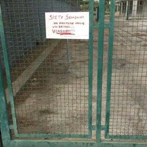 Bari, contestazione tifosi: cartello FOTO e uova di gallina