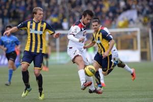 Casertana-Ischia Sportube: streaming diretta live