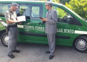 Guarda la versione ingrandita di Sicilia: scandalo guardie forestali. Stipendio pubblico e... (foto d'archivio Ansa)