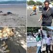 Costa d'Avorio, attacco a resort: almeno 15 morti VIDEO 01