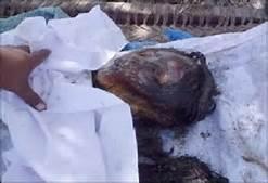 Donna bruciata viva in India