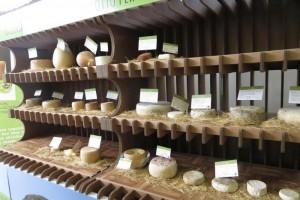 Firenze: formaggio romeno contaminato, bimbo in ospedale