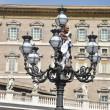 Paura a San Pietro: si arrampica su lampione mentre Papa...3