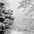 Previsioni meteo: temporali e freddo, soprattutto a Sud FOTO 7