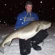 Pescato merluzzo da 30 kg: pesce per 150 Fish & Chips FOTO