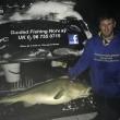 Pescato merluzzo da 30 kg: pesce per 150 Fish & Chips4