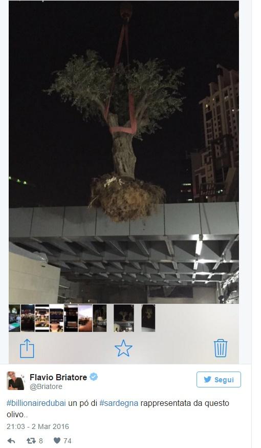 Flavio Briatore, olivo nella terrazza Billionaire Dubai FOTO