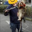 Ratto gigante in parco giochi per bimbi a Londra: lungo 1,2m 2