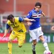 Sampdoria-Chievo: diretta live su Blitz10