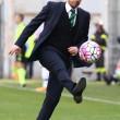 Sassuolo-Udinese: diretta live su Blitz10