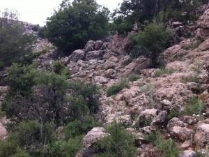 FOTO Dove si nascondono i 2 soldati israeliani in mimetica