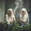 """Suore coltivano marijuana: """"Fumare per avvicinarsi a Dio"""""""