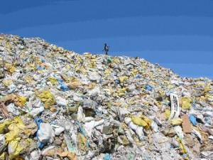 Batterio mangia plastica: così salveremo gli oceani