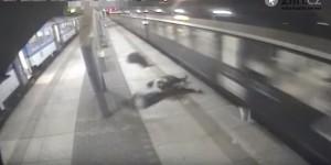 Attraversano binari, treno li travolge: feriti
