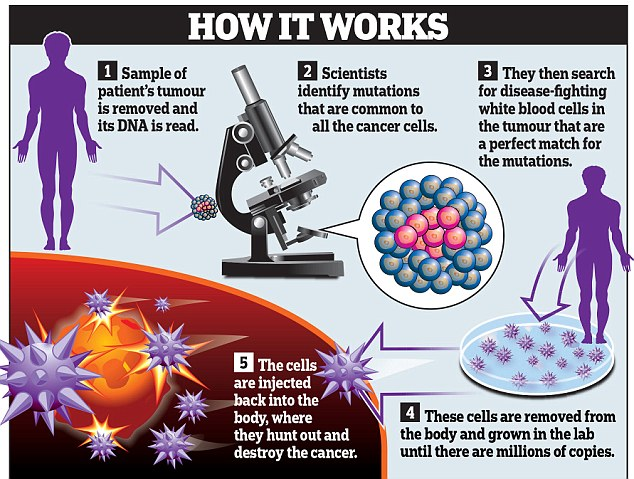 Tumori e immunoterapia: nuovo, rivoluzionario, trattamento
