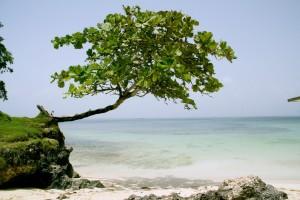 Guarda la versione ingrandita di Repubblica Dominicana: 3 luoghi da visitare nel 2016